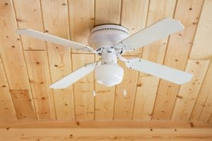 Fan on Knotty Pine Ceiling